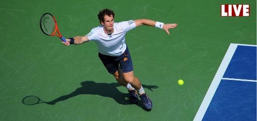 Djokovic face à Murray, la finale de l'US Open en Live commenté !