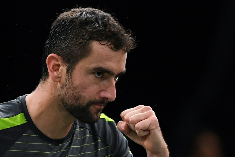 Cilic pulls out of Croatia's Davis Cup squad due to injury